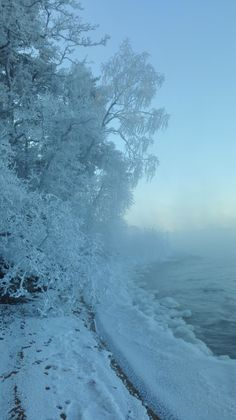 Ruissalo is real winter wonderland in Turku, Finland. Like in fairytale with all these white trees and snow.