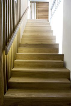 Timber stair treads, risers + handrail