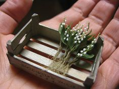 Lily of the valley with roots! Dollhouse & Miniature ROSY, Yukari Miyazaki