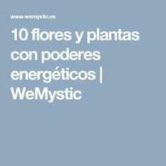 10 flores y plantas con poderes energéticos   WeMystic