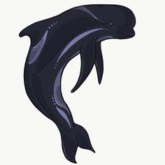 So much snow in Seattle again! Pilot whale show me the way to work... oh it doesn't work that way? Darn. Grab your own pilot whale design in my Redbubble store just don't expect them to be your GPS