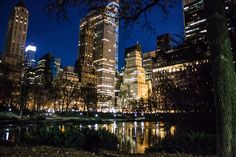 Central park new York Central Park, New York Skyline, Travel, Fotografia, Viajes, Traveling, Trips, Tourism
