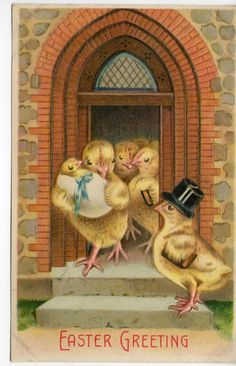 Easter Greeting Fantasy Chick Hat Church Baby Chick in Egg Blue Ribbon Postcard | eBay