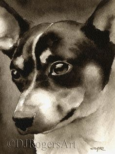 About the Artwork: This is a professional open edition Giclee print by artist David J. The artwork is printed from an original watercolor Grey Great Dane, Rat Terrier Dogs, Fox Terrier, Chihuahua Art, Detail Art, Dog Art, Dog Life, Rats, Cute Dogs