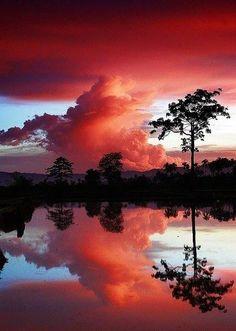 Fate come gli alberi: cambiate le foglie e conservate le radici. Quindi, cambiate le vostre idee ma conservate i vostri princìpi. Victor Hugo