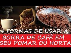 Como Utilizar Pó de Café Usado como Fertilizante/Adubo! - YouTube