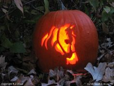 Awesome pumpkin!