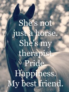 ❤not just my horse❤
