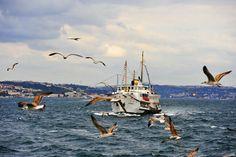 Istanbul Türkiye Turkey