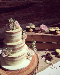 Naked cake with cupcake and pinecone display