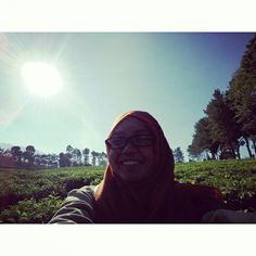 Wonosari Garden Tea , Lawang - Malang - East Java - Indonesia