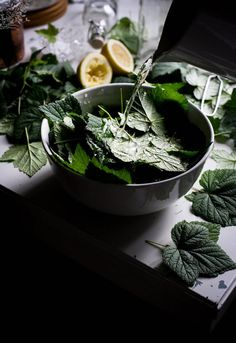 Homemade Blackcurrant Leaf Juice | My Vintage Cooking Recipes With Marshmallows, Homemade Marshmallows, Popsicle Recipes, Rye Sourdough Starter, Apple Custard, Blueberry Season, Vintage Cooking, Wild Blueberries, Summer Drinks
