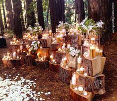 forest ceremony.