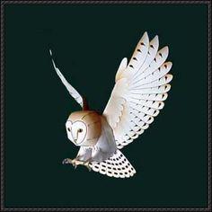 Animal Paper Model - Barn Owl Free Template Download