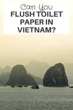Can You Flush Toilet Paper in Vietnam? Vietnam is a wonderful country to visit with its history, temples, lush landscape, and more. But No, you can't flush toilet paper in #Vietnam. Lets us look into this more.   vietnam travel guide   vietnam travel tips   vietnam travel itinerary   vietnam tips   #traveling #visitvietnam #backpacking Countries To Visit, Places To Visit, Vietnam Travel Guide, Visit Vietnam, Flush Toilet, Temples, Toilet Paper, Backpacking, Islands