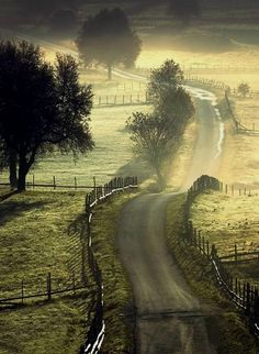 ©Adnan Bubalo. Early morning on a country road. What a fantastic way to greet the day. That, my friends, is heaven.