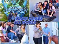 Tudo que você precisa saber do Sea World! #DisneyMania