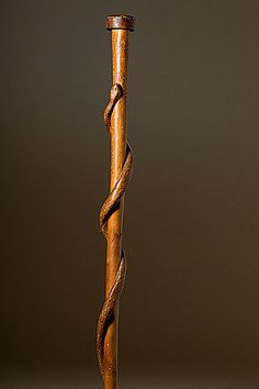 Fine art - walking stick