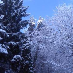 Das Original und die daraus resultierenden Spiegelbilder - im Himmelreich des Ortes, in dem die Götter Schach spielen ;-) Snow, Outdoor, Mirror Image, Heavens, Places, World, Pictures, Outdoors, Outdoor Games