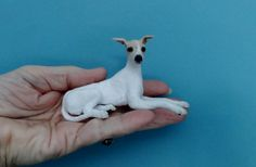 Satine custom Whippet by Lucy Maloney on Behance