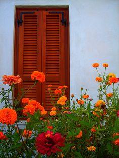 Window of Pollonia, Sifnos Island, Cyclades, Greece Wooden Shutters, Wooden Windows, Windows And Doors, Red Flowers, Colorful Flowers, Orange Front Doors, The Door Is Open, Little Gardens, Old Doors