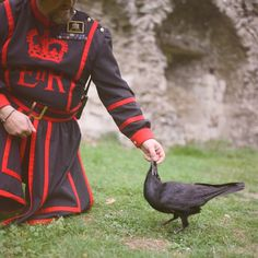 4da6cd49a3 The secrets of the royal ravenmaster at the Tower of London — The Washington  Post