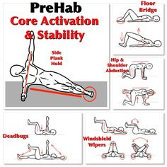 Connect the Shoulders to the Hips with Core Activation and Stability exercises. For detailed instructions, go to: https://www.facebook.com/Michael.Rosengart.CSCS/posts/894007370666248 #prehab #core #activationexercises