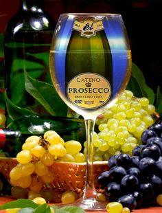 """Latino Prosecco""""Vino ...."""