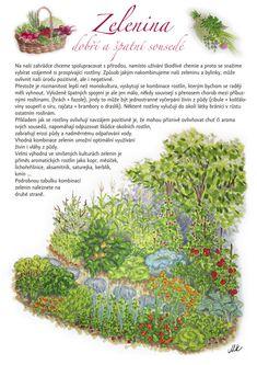 Kartičky návrhy — KT gardens ktgardens Land Art, Growing Plants, Herb Garden, Indoor Plants, Ale, Herbs, Gardens, Biology, Chemistry