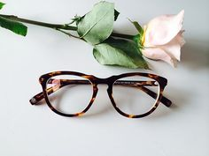 WARBY PARKER SPRING COLLECTION 2014 //