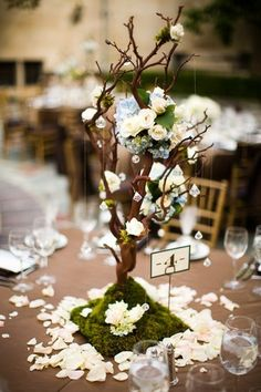 Wedding ideas: wedding tree centerpieces.