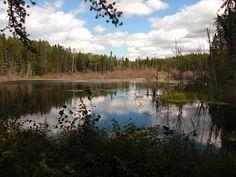 Along Grey Owl Trail - Prince Albert National Park, #Saskatchewan