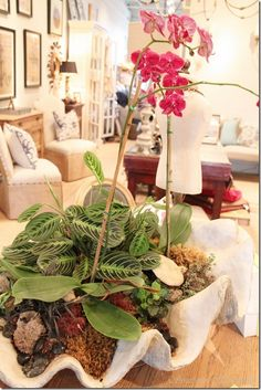 Orchids in a clam shell - cool idea! (1) From:  Southern Hospitality, please visit