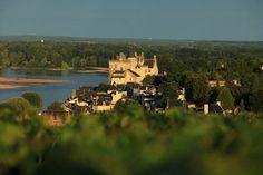 Belle vue sur le château de Montsoreau depuis les vignes du Saumur-Champigny #Saumur #vinsdeloire
