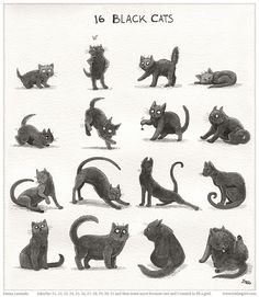 16 black cats by elma on deviantart.com.