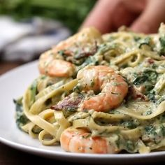 Shrimp and Spinach Pasta Best Seafood Recipes, Healthy Dinner Recipes, Cooking Recipes, Seafood Dishes, Pasta Dishes, Casserole Recipes, Food Shrimp, Homemade Alfredo, Homemade Pasta