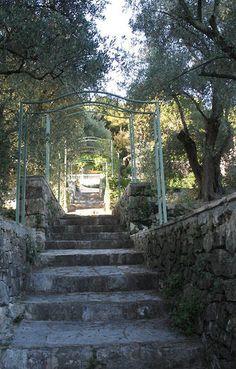 The Olive Farm Italian staircase.  Carol Drinkwater
