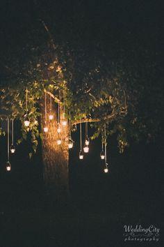 Hanging wedding tree lights