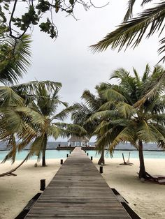MALDIVES PHOTO DIARY - SCENT OF OBSESSION - fashion blogger, outfit, travel and beauty tips