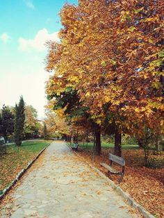 autumn , Prishtina park