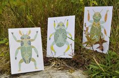 bug postcards by Rita Fürstenau