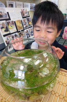 """Hi, tadpoles! I see you swimming"", declared our PreK classmate."