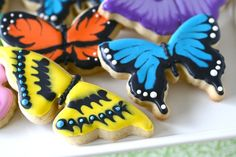 Lovely spring cookies - I love getting ideas for cookie decorating but don't know that I'll actually do them! Fancy Cookies, Cut Out Cookies, Iced Cookies, Cute Cookies, Royal Icing Cookies, Sugar Cookies, Cookie Icing, Royal Frosting, Butterfly Cookies