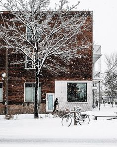 #Montreal #mtlmoments My Dreams In Life, Seasons Of The Year, Beautiful Images, Beautiful Scenery, Winter Scenes, Photos, Pictures, Winter White, Winter Season