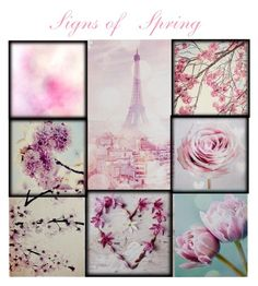 """""""Signs of Spring🌸"""" by jbeb ❤ liked on Polyvore featuring art"""