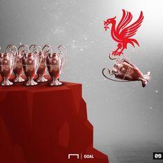 Liverpool Fc Champions League, Liverpool Premier League, Premier League Champions, Gerrard Liverpool, Fc Liverpool, Liverpool Football Club, Football Tattoo, Liverpool Fc Wallpaper, World Football