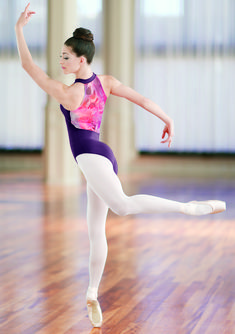 Dancewear Solutions has pretty little leotards for class & competition.