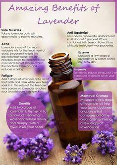 Amazing benefits of Lavender... www.funshineoils.com http://mydoterra.com/ericandjerrica