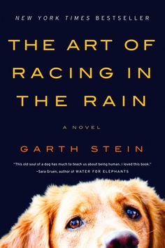 The Art of Racing in the Rain by Garth Stein {such a great book}