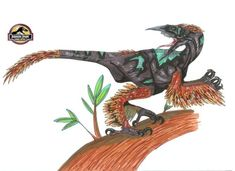 Hybrid of microraptor, australovenator and woodpecker, this hybrid dig holes in trees to catch insects. It is also a scavenger, sensing carcass from miles away. Jurassic World, Science Fiction Games, Dinosaur Art, Prehistoric Creatures, Cool Pokemon, My Buddy, Fan Art, Trees, Godzilla